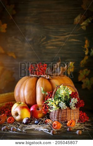 Wooden table, decorated with vegetables, pumpkins and autumn leaves. Autumn background. Happy Thanksgiving Day background. Harvest.