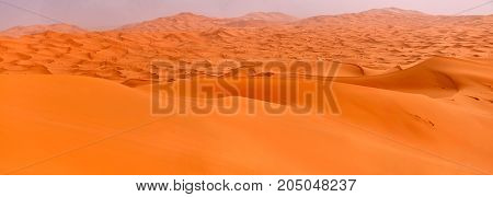 Majestic dunes of the Sahara Desert at dawn a boundless set of sand