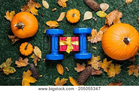 Blue Dumbbells And Autumn Pumpkin With Leaves On Green Grass Background