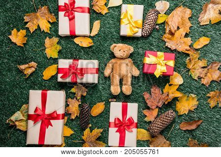Teddy Bear And Autumn Yellow Leaves With Gifts