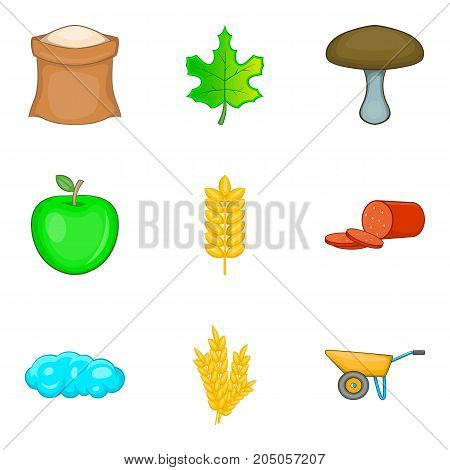 Own food icons set. Cartoon set of 9 own food vector icons for web isolated on white background
