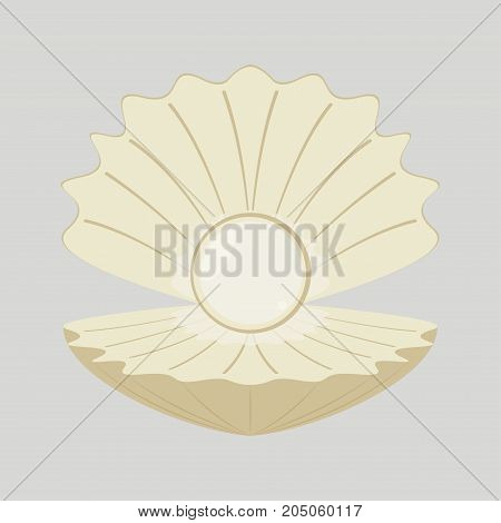 Beautiful natural open pearl shell. Vector illustration