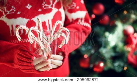 Girl Holding Stack Of Peppermint Candy Canes. Christmas Holiday Concept. Holiday Background