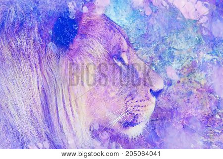 Lion face and graphic effect. Computer collage. Marble effect