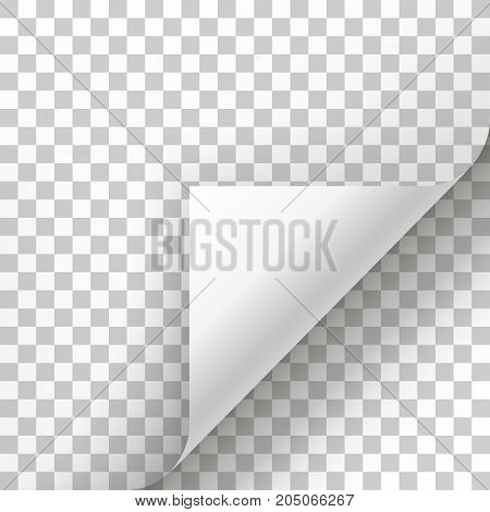 Page curl with shadow on blank sheet of paper. White paper sticker. Element for advertising and promotional message isolated on transparent background. template design element, Vector illustration