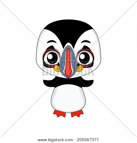 Cute Stylized Cartoon Puffin Illustration ( For Fun Educational Purposes, Illustrations Etc. )