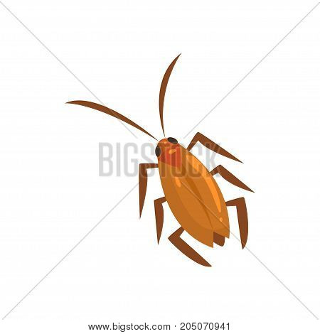 Brown cockroach insect cartoon vector illustration isolated on a white background