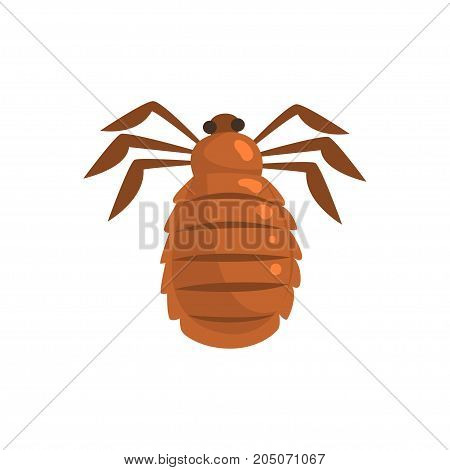 Louse insect parasite cartoon vector illustration isolated on a white background