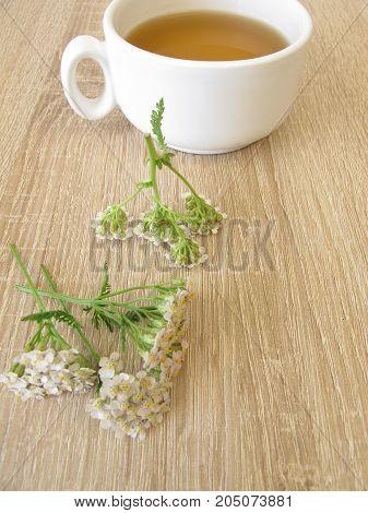 Cup of herbal tea with yarrow herbs