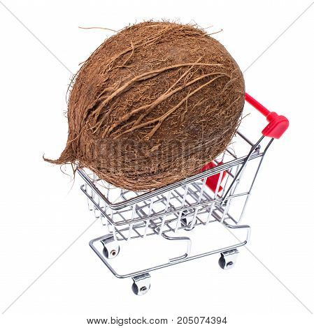 Whole coconut in shopping cart. Studio Photo