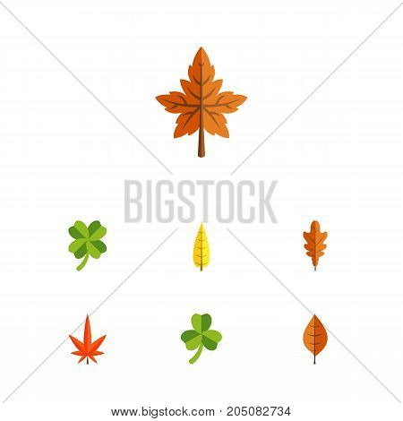 Flat Icon Foliage Set Of Leafage, Alder, Aspen And Other Vector Objects