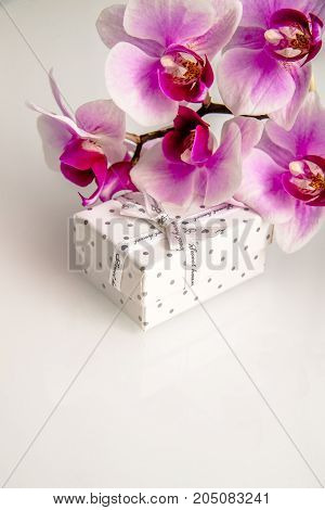 Gift box on a background of purple orchids