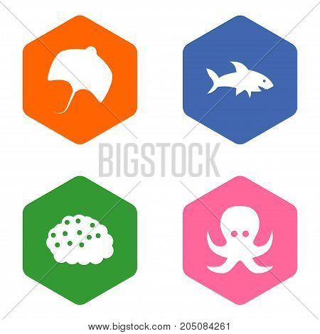 Collection Of Stingray, Shark, Devilfish And Other Elements.  Set Of 4 Food Icons Set.