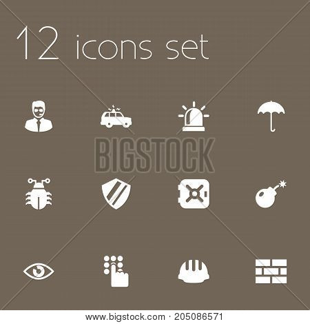 Collection Of Dynamite, Strongbox, Patrol And Other Elements.  Set Of 12 Security Icons Set.