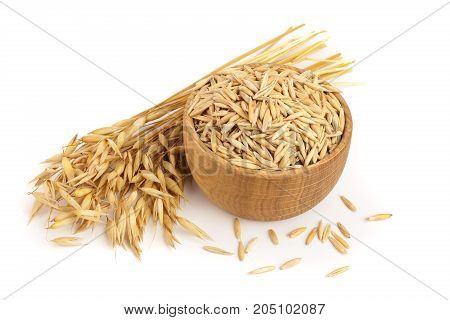 oat spike with grains in wooden bowl isolated on white background.