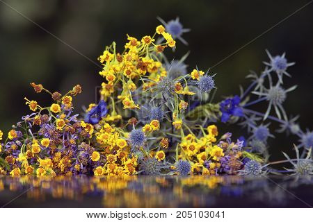 A Bouquet Of Small Flowers With Colourful Petals