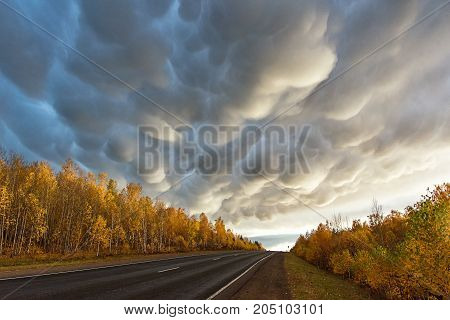 autumn colorful landscape with road and clouds
