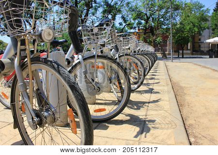Bike rental station with row of bikes on summer street background. Healthy lifestyle option for travelling throught the city, easy and cheap transit in urban life. Simple isolated bikes cityscape