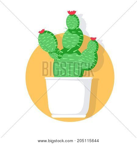 Vector indoor, house plant in pot. Home decorative and deciduous plant in a flat style. Cactus in pot. Colored funny cute cactus vector set, cute plants. Mexican cactus set. Modern cactus illustration.