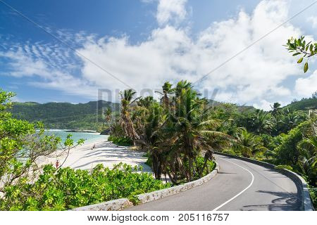 Coral sandy beach among the palm trees along the road. Seychelles. Sunny day.