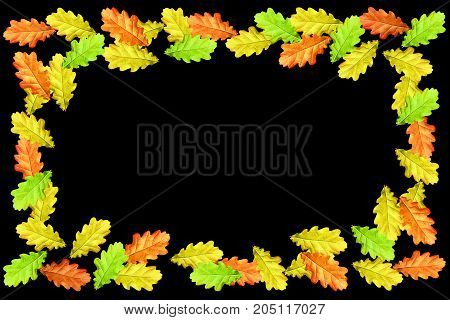 Bright colorful autumn leaves isolated on black background. oak