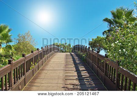 bridge to paradise. bridge in a tropical garden