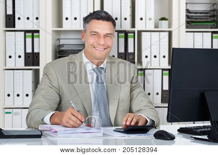 Portrait Of A Mature Accountant Working In Office