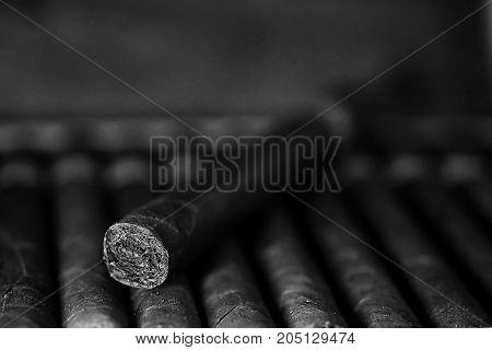 monochrome photo of large wooden box of cigars handmade Cuban production