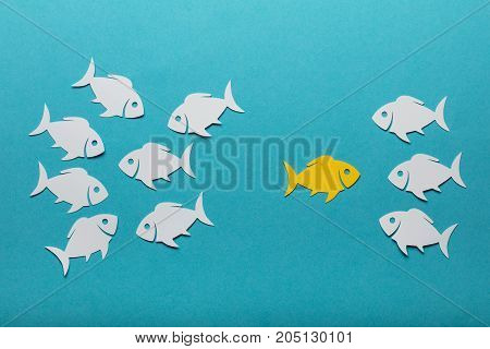 Paper Fish Changing Peer Group Over Blue Background
