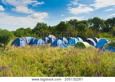Camping tents on a green meadow with flowers