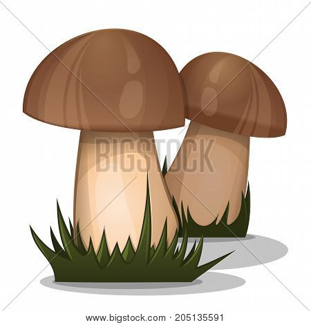 Organic nature forest mushrooms in grass. Vector mushrooms icon isolated on white background
