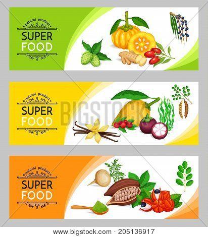 Vector illustration superfood banner template. Healthy detox natural product of camu camu, garcinia cambogia and maca. Carob, ginger, moringa, lucuma, coji berries, mangosteen, acai, guarana and noni.