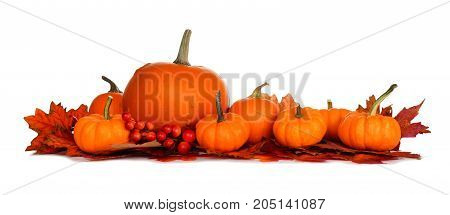 Autumn Border Of Pumpkins And Red Fall Leaves Isolated On A White Background
