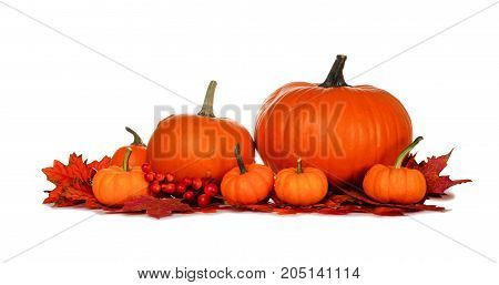 Autumn Pumpkins And Red Fall Leaves Isolated On A White Background