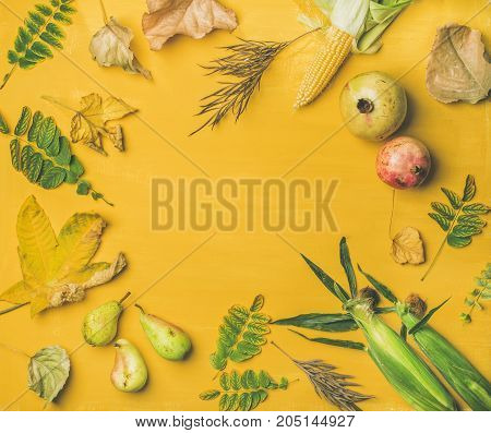 Fall background, texture, pattern. Flat-lay of Autumn fruit, vegetables and leaves over yellow table, top view, copy space, square crop. Pomegranates, pears, corn cobs. Thanksgiving day concept