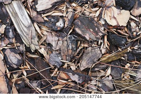 a mulch wood chips texture background pattern.