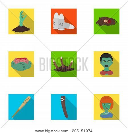 Apocalypse , rotten, woman, and other  icon in flat style.Scary, skin, man, icons in set collection.