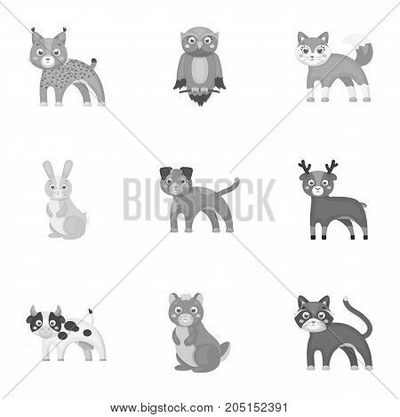 Farm, production, zoo and other  icon in monochrome style. Animals, nature, forest