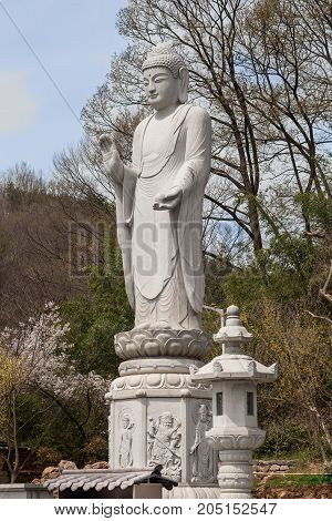 Budda statue in buddhist temple Songgwangsa South Korea 12 april 2017