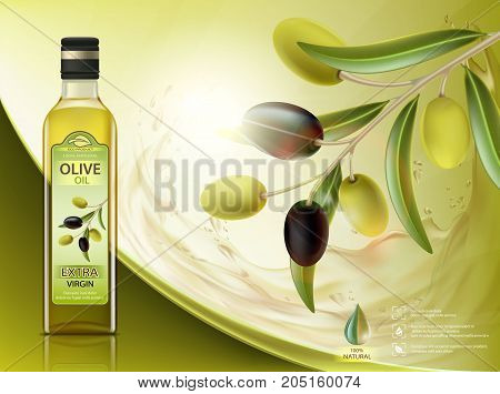 Glass bottle with oil and olives with leaves on a branch. Package label design. Healthy vegetarian product. Stock vector illustration.