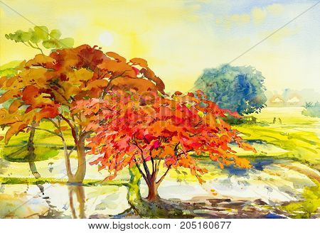 Painting landscape watercolor original colorful of Peacock flowers trees cornfield with morning sun and emotion in sky,cloud background. Hand Painted Impressionist abstract image.