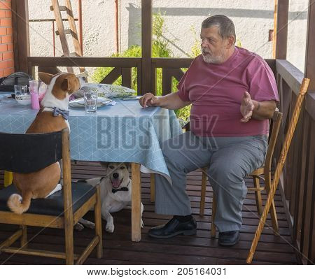 Fat bearded senior tells horror story to his dogs sitting in summer veranda