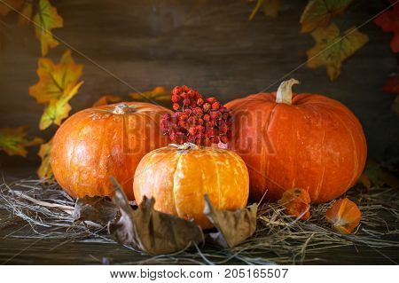 Wooden table decorated with pumpkins and autumn leaves. Autumn background. Happy Thanksgiving Day background. Harvest.