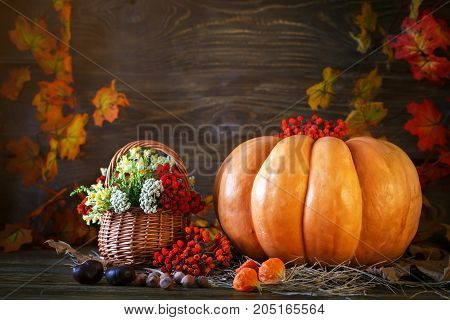 The wooden table decorated wild with flowers by pumpkins and autumn leaves. Autumn background. Happy Thanksgiving Day background. Harvest.