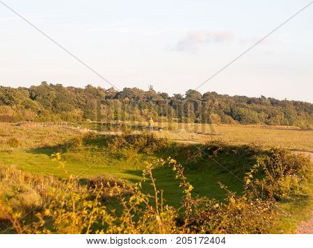 Beautiful Country Farm Grass Land Scene Outside Person Walking His Dog In Distance