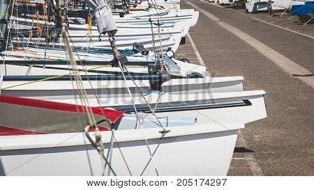alignment of catamarans in a port of Vendee France