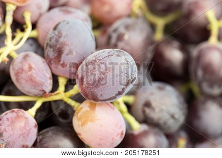 Red grape with water drops, closeup background .
