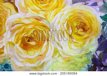 Painting flora art watercolor original illustration yellow color of roses and emotion beauty in nature season or abstract background. Hand painted Greeting cards on special occasions.