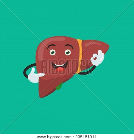 Funny happy liver character show hand sign ok. Cute human internal organ sign. Vector illustration in cartoon style