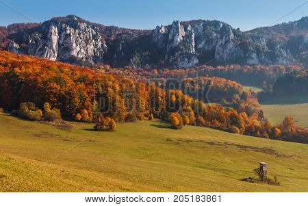 natural scenery of rocks in autumn in Sulov - Slovakia Europe